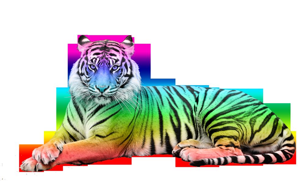 Altéréo Tigre couleur arc-en-ciel de l'offre Tigrium